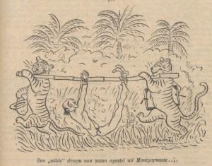 fabres-harimau